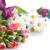 bouquet · fiori · colorato · garofano · altro - foto d'archivio © taden