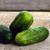 свежие · огурцы · фенхель · белый · природы · фрукты - Сток-фото © taden