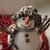 kardan · adam · sahte · kar · Noel · zaman · kış - stok fotoğraf © taden