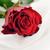 赤いバラ · 白 · シルク · 孤立した · 光 · 工場 - ストックフォト © taden