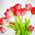 rouge · fleurs · bouquet · verre · vase · lumineuses - photo stock © taden