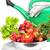 gieter · groenten · groene · verse · groenten · water · vruchten - stockfoto © taden