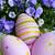 çiçekler · mavi · saksı · güzellik · buket · dekorasyon - stok fotoğraf © taden