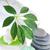 handdoek · groene · zeep · stenen · witte · gezondheid - stockfoto © taden