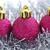 Рождества · гирлянда · изолированный · белый · моде - Сток-фото © taden