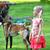 少女 · 犬 · 演奏 · 草 · 顔 · 愛 - ストックフォト © taden