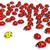 uniek · Geel · lieveheersbeestje · lieveheersbeestje · menigte · Rood - stockfoto © taichesco