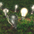 ötletek · villanykörték · különböző · méret · növekvő · füves - stock fotó © TaiChesco