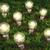 ampuller · farklı · boyut · büyüyen · fikirler · çimenli - stok fotoğraf © TaiChesco
