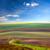 original lanscape of colorful fields stock photo © taiga