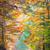 ősz · juhar · út · színes · vibráló · fák - stock fotó © taiga