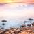 побережье · ночь · длительной · экспозиции · выстрел · небе · океана - Сток-фото © taiga