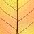 groen · blad · cel · structuur · macro · textuur · shot - stockfoto © taiga