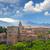 表示 · アルハンブラ宮殿 · 宮殿 · スペイン · 教会 · 古代 - ストックフォト © taiga