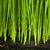 свежие · трава · капли · роса · зеленый · экология - Сток-фото © taiga