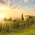 tuscany at sundown   countryside road with trees and house stock photo © taiga