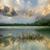 tavasz · erdő · ködös · reggel · út · nap - stock fotó © taiga