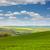 zöld · domb · búza · kék · ég · fű · nap - stock fotó © taiga