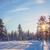 日没 · 空 · 冬 · 雪 · シーン - ストックフォト © taiga
