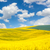 waves hills landscape of colorful fields and beautiful blue sky stock photo © taiga