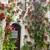 veranda · İspanya · bahçe · binalar · mimari · bitki - stok fotoğraf © taiga