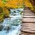 outono · paisagem · pitoresco · cachoeiras · cair · parque - foto stock © taiga