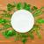 базилик · границе · белый · органический · зеленый · травы - Сток-фото © taiga