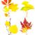 黄色 · 秋 · メイプル · 葉 · ツリー - ストックフォト © taiga