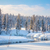 beautiful winter forest landscape   trees covered snow and smal stock photo © taiga