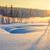 tél · tájkép · fák · jég · gyönyörű · fagyott - stock fotó © taiga
