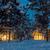 pequeno · casa · fantástico · neve · floresta - foto stock © taiga