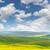 verde · frescos · hierba · cielo · azul · panorama · listo - foto stock © taiga