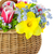 bouquet of spring flowers in basket isolated stock photo © taiga