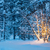 christmas tree with garland lights in snowy winter forest stock photo © taiga