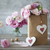 güller · pembe - stok fotoğraf © taiga
