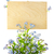 wood sign with flowers empty board for your text isolated o stock photo © taiga
