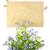 engem · nem · virág · makró · közelkép · kék - stock fotó © taiga