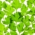 fresh parsley close up background back lit stock photo © taiga