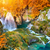 秋 · 滝 · スモーキー · 山 · 森林 - ストックフォト © taiga