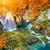 outono · cachoeira · montanha · mata · rochas - foto stock © taiga