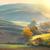 toscana · campos · outono · paisagem · Itália · colheita - foto stock © taiga