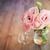 naturaleza · muerta · rosa · rosas · cesta · flores - foto stock © taiga