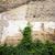 mur · de · briques · pipe · texture · courir · eau · ville - photo stock © taigi