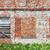 brick wall and windows stock photo © taigi
