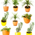 набор · растений · изолированный · белый · другой - Сток-фото © taigi