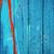velho · azul · horizontal · árvore · parede - foto stock © taigi