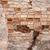 Rood · muur · groot · muur · oude · bakstenen - stockfoto © taigi