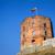 torony · Vilnius · tavasz · épület · város · nap - stock fotó © taigi