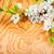 alma · virág · fa · fából · készült · virág · fa - stock fotó © taigi