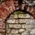 demolição · casa · velha · reconstrução · parede · janela · urbano - foto stock © taigi